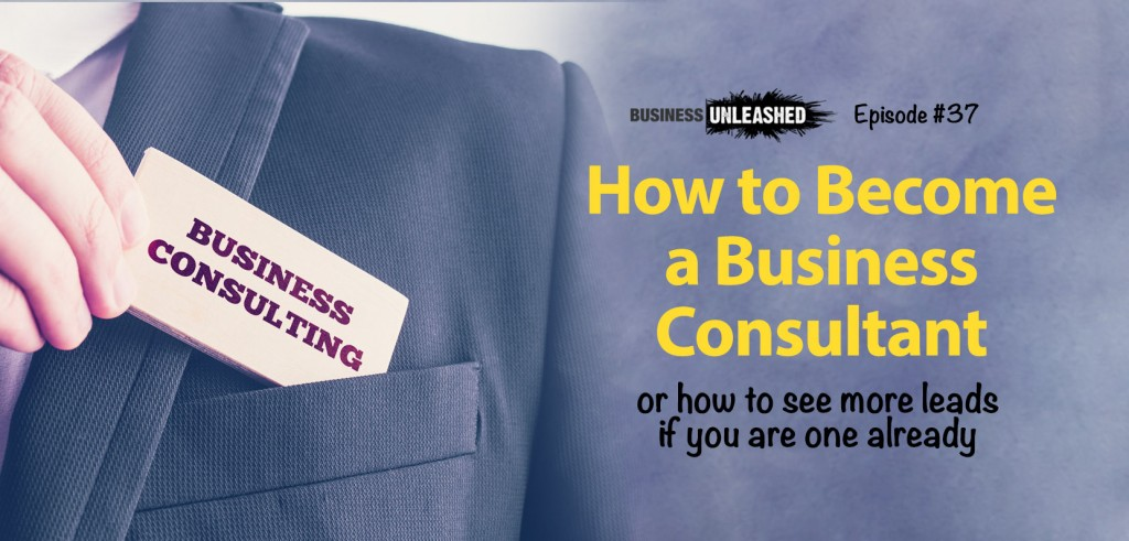 37 - How to Become a Business Consultant
